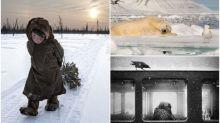 【圖集】超高質攝影比賽頒獎禮 冰天雪地自然生態