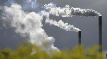 Grandes investidores querem empresas neutras em carbono até 2050