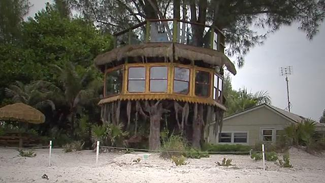Holmes Beach couple fighting city to keep tree house