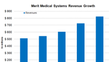 Exploring Merit Medical Systems' Business Segments