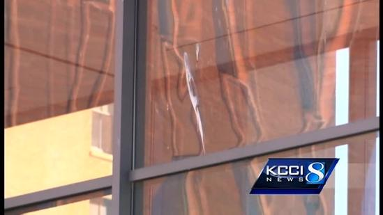 Birds blanket downtown with droppings