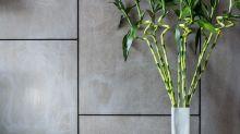 Estas plantas para interiores pueden sobrevivir con poca luz