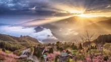 台灣花蓮、新竹森林系民宿推薦 來一趟大自然的打卡之旅