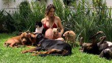 """Grávida, Laura Neiva posa com cães: """"Mãe de sete"""""""