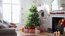 You can now pre-order a real Christmas tree online from John Lewis