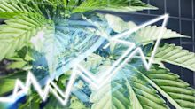 Why this ASX cannabis share raced 4% higher on Friday