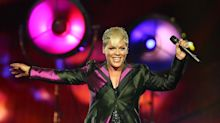 P!nk tells 'keyboard warriors' to unfollow her over Nathan Phillips defense