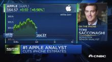Bernstein's Apple analyst says iPhone cycle 'weak', cuts ...