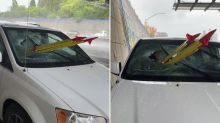 Car passenger impaled by tripod thrown from highway overpass