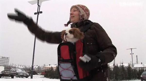 Yes, that's a woman with a dog in a Baby Björn throwing prototype Nokias