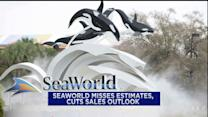 SeaWorld tanks, Macy's lowers sales outlook; King Digital gets crushed