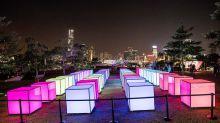 【聖誕必去】閃躍維港燈影節 Hong Kong Pulse Light Festival