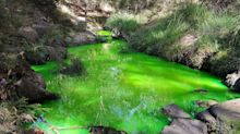 'Concerning' story behind Melbourne creek's fluoro glow