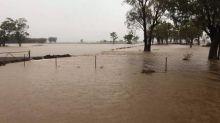 Enchente traz 'alegria' para região atingida por incêndios na Austrália