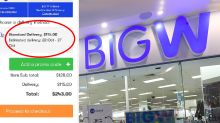 'Outrageous': $115 BIG W glitch that has shoppers fuming