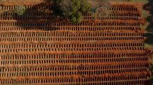 Covid-19: Brasil tem 81.487 mortes e 2.159.654 casos confirmados, dizem secretarias de Saúde