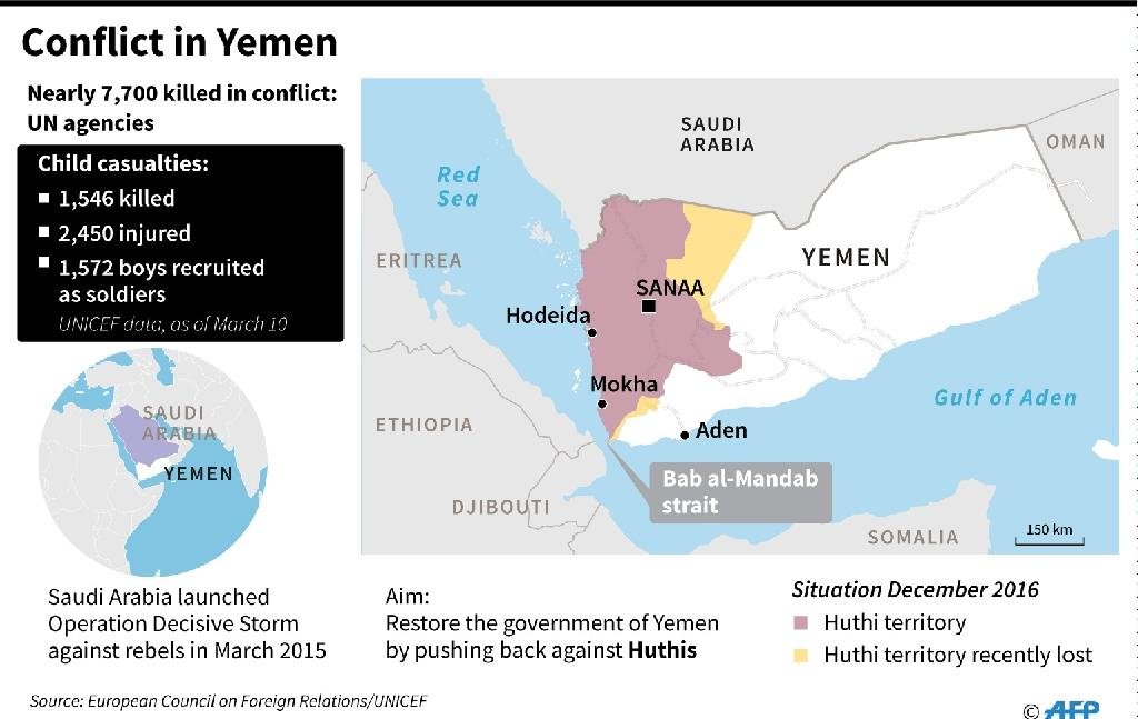Conflict in Yemen (AFP Photo/AFP )