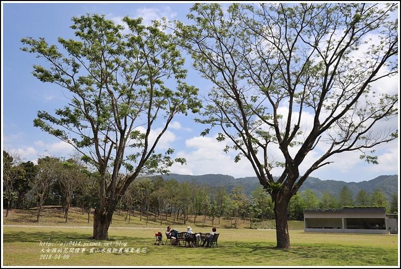 雲山水植物農場鳶尾花-2018-04-37.jpg