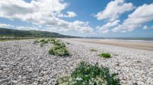 Poem of the week: On a Pebbly Beach by John Birtwhistle
