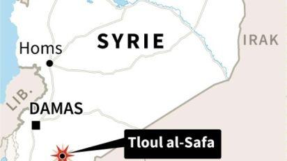 Les forces de Damas reprennent le dernier réduit de l'EI dans le sud de la Syrie