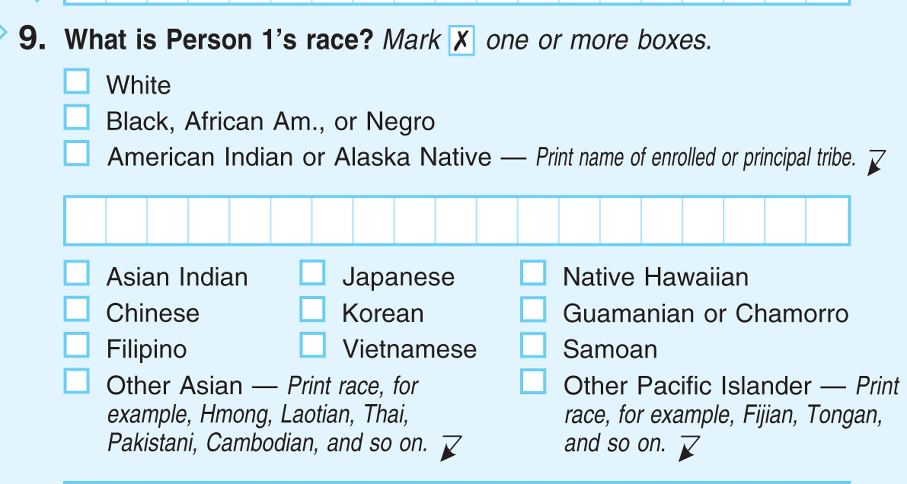 """This handout image obtained by The Associated Press shows question 9: """"What is Person 1's race"""", on the first page of the 2010 Census form, with options for White: Black, African Am., or Negro. After more than a century, the Census Bureau is dropping use of the word """"Negro"""" to describe black Americans in its surveys. Instead of the term popularized during the Jim Crow era of racial segregation, census forms will use the more modern-day labels, """"black"""" or """"African-American"""". (AP Photo)"""