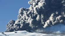 Earthquakes in Iceland spark fears of volcanic eruption