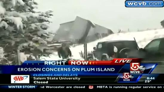 House collapses on Plum Island