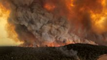 Bushfires: Another Dangerous Day As Authorities Warn 'Conditions May Not Be Survivable'