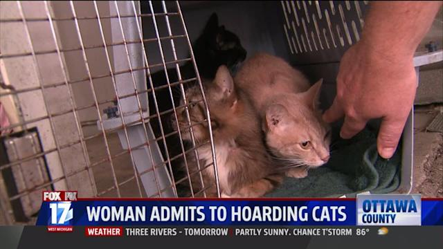 Woman Admits to Hoarding Cats