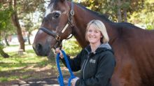 How Hooligan the horse harnessed vet student talent and the legacy he'll leave