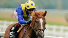 Talking Horses: Dream Of Dreams can lift the Sprint Cup for Stoute
