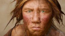 Encontraron un diente de leche de 48.000 años que perteneció a uno de los últimos neandertales
