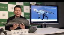 New dinosaur discovered in Japan named after Shinto god