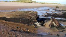 Sajid Javid quashes plan for new coal mine in Northumberland