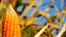 Olam issues $249m worth of notes
