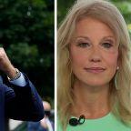Kellyanne Conway: Biden is plagiarizing Trump's 'America First' plan