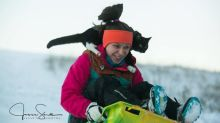Cat goes sledding with human in viral video