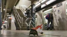 鼓勵大家帶走垃圾!紐約地鐵移走垃圾桶 結果全地垃圾