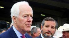 Texas senators oppose tax increase for President Joe Biden's American Families Plan