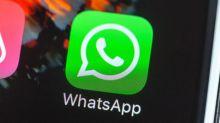 WhatsApp vai avisar quando contas forem invadidas