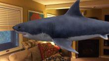 Realtà aumentata, come vedere gli animali in 3D realizzati da Google