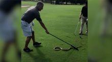 Una serpiente se cuela en un campo de golf