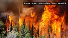Wildfires rage across several U.S. states