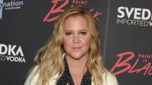 Amy Schumer Officially Won National Bikini Day With Her Insta Pic