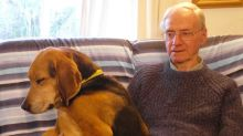 Former soldier murdered dog walker, 83, because 'a voice in his head told him to hurt someone'