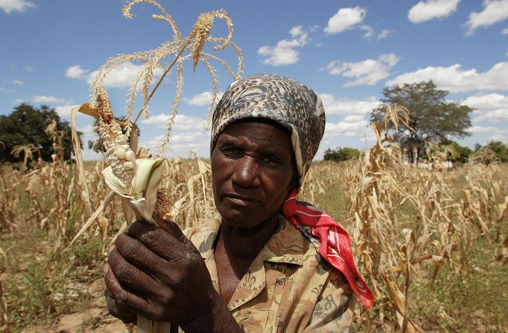 Zimbabwe has blamed low farm yields on erratic rains due to climate change, as well as crippling Western sanctions (AFP Photo/Alexander Joe)