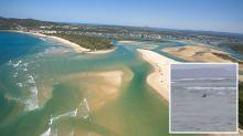 Shocking close encounter at popular Queensland beach