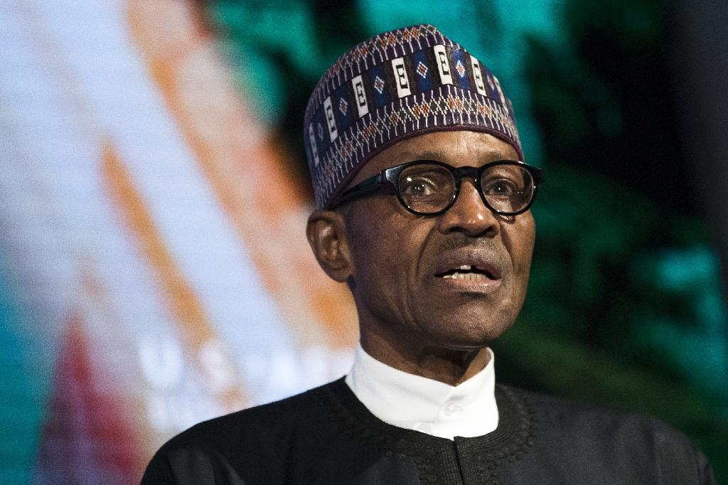 Nigeria's President President Muhammadu Buhari had last week sent a letter to parliament urging lawmakers to approve his plan to raise $29.6 billion to fund sorely needed infrastructure projects over the next three years (AFP Photo/Drew Angerer)
