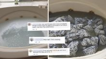 'So embarrassed': Shock photo highlights hidden filth in common household item