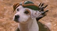 'Wishbone' Feature Film in the Works From Universal Pictures and Mattel